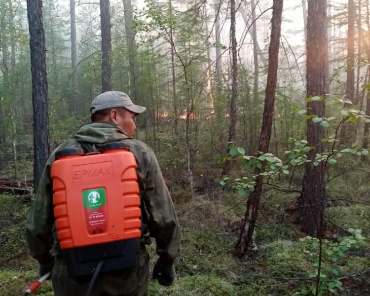 В Якутии тушат 19 лесных пожаров