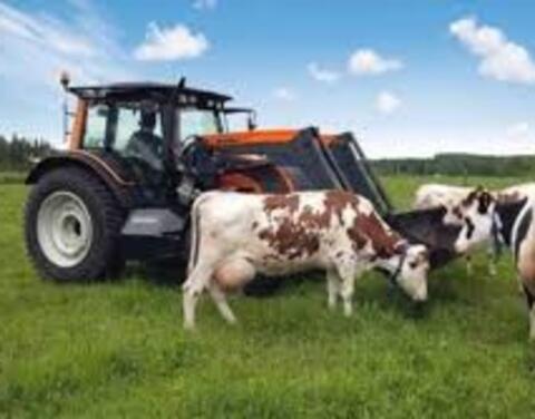 В 2020 году в Якутии на поддержку фермеров направят почти 340 млн рублей