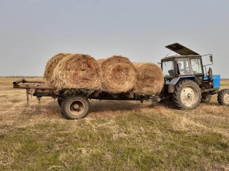 Якутские студенты заготовили более 400 тонн сена для экофермы «Туймаада»
