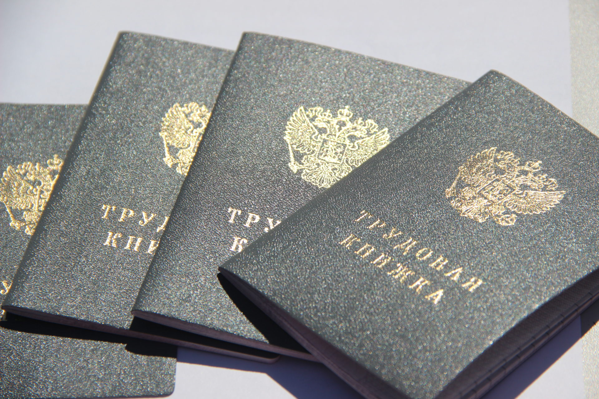 В течение 2020 года якутяне должны сделать выбор по трудовой книжке