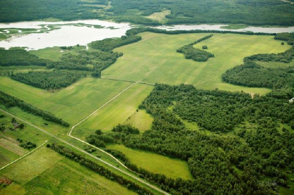 Правительство РФ утвердило критерии использования «дальневосточного гектара»