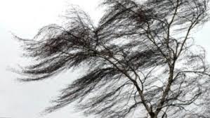 МЧС предупреждает. В районах Якутии прогнозируют усиление ветра