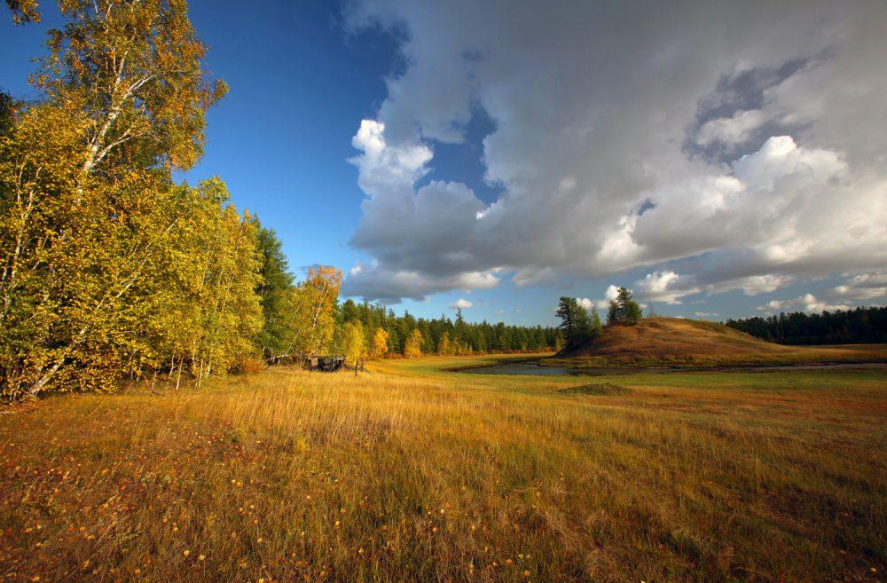 Владельцы «дальневосточных гектаров» в Якутии должны подать декларации об освоении земли