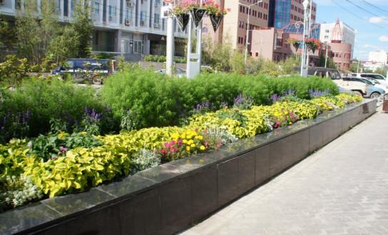 В Якутске разработают стратегию по озеленению города